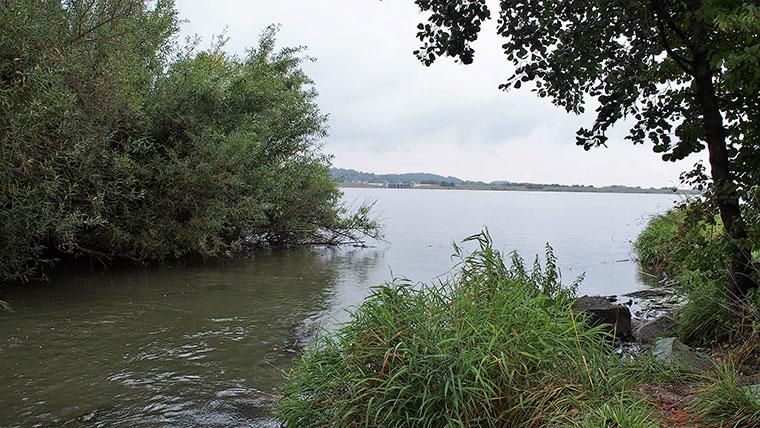 Abschnitt 1 des Vilssee.