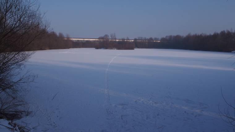 Abschnitt 1 im Vereinsgewässer Haslbeckweiher.